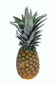 Fatburner Ananas?